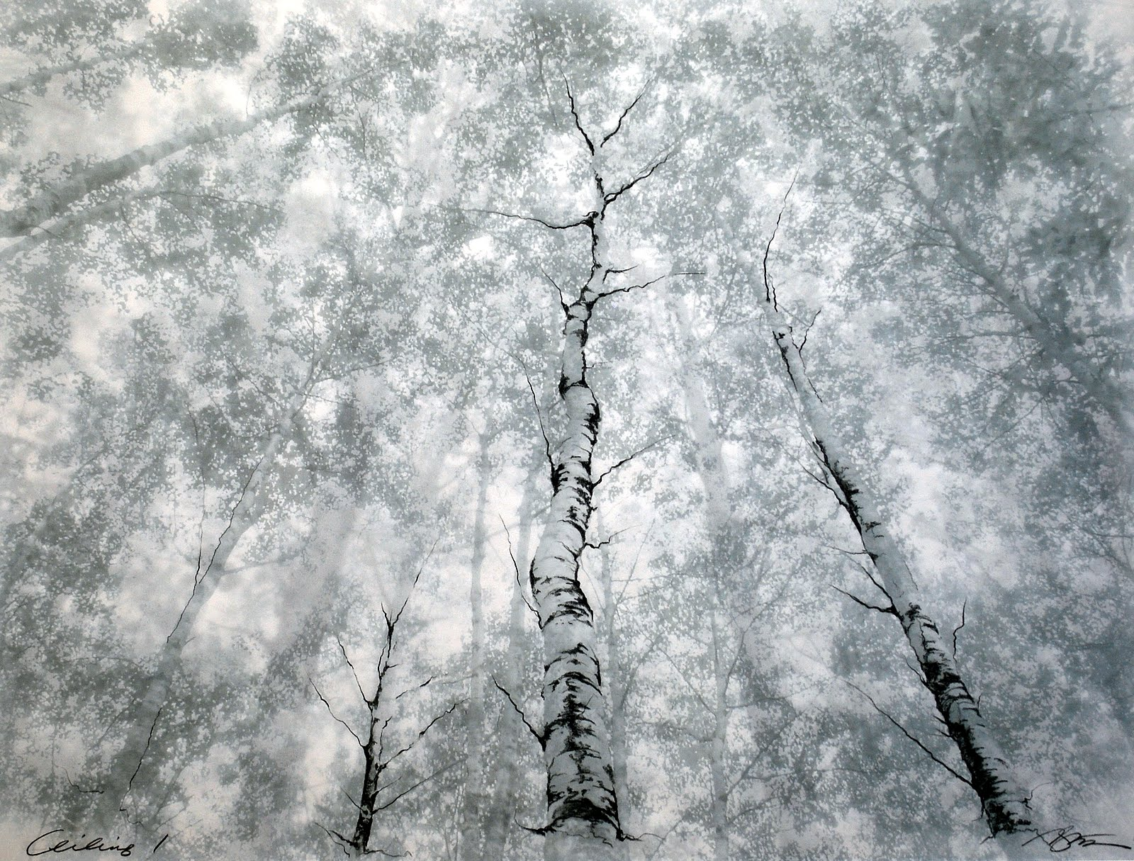 drawing, trees, mixed media