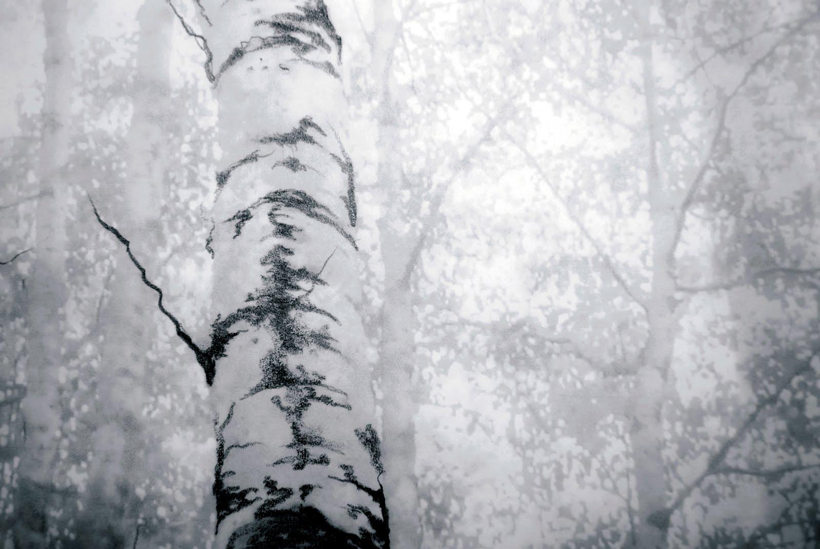 drawing, trees, mixed media